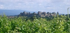 Carcassonne, languedoc, france, 